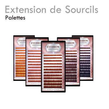 Palette pour Extensions de Sourcils
