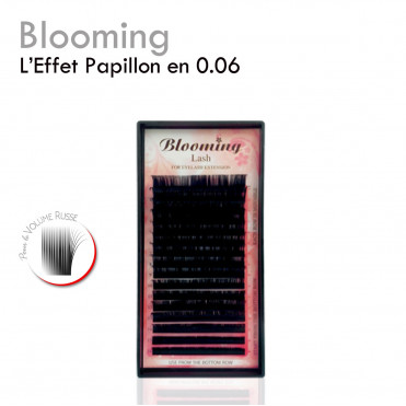 Blooming 0.06 extension de cils volume russe papillon lignes mix longueurs