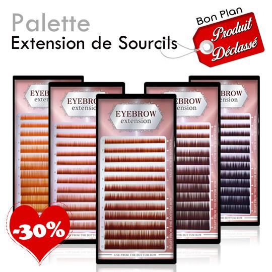 Bon Plan - Palettes Extensions de Sourcils déclassé promotion
