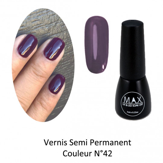 Vernis Semi Permanent - Grape (42)