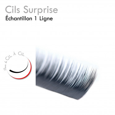 Ligne de Cils Surprise  Cil à Cil Offerte cadeau échantillon
